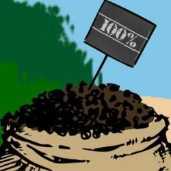 100% Robusta