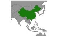 Thés verts de Chine